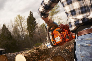 Picture for category Chainsaws, Stump Grinders & Log Splitters